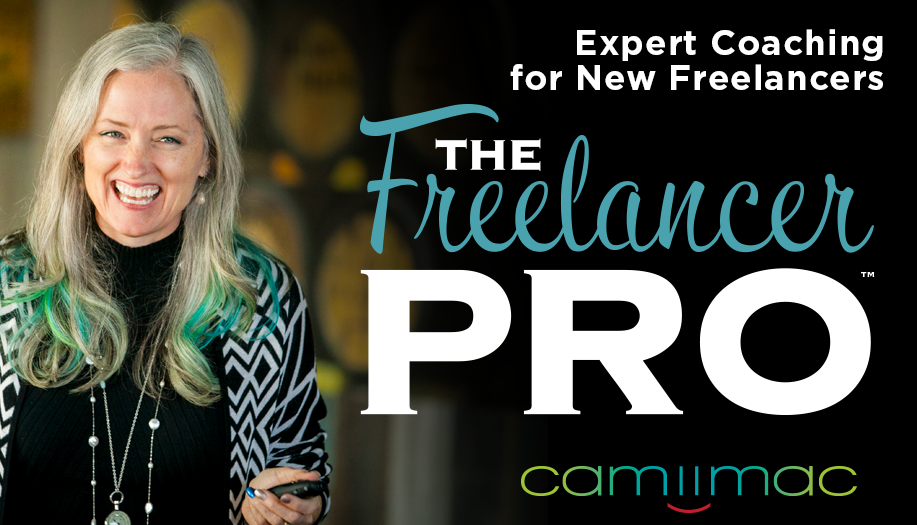 Freelancer Pro ad